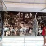 Museu Mazzaropi 03