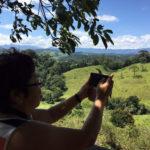 Fazenda Agua da Capoeira Colhe e Pague Caqui Fuyu 03
