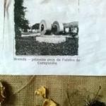 Fazenda Coruputuba 08