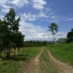 Fazenda Coruputuba 24
