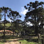 Fazenda Rio Manso 13