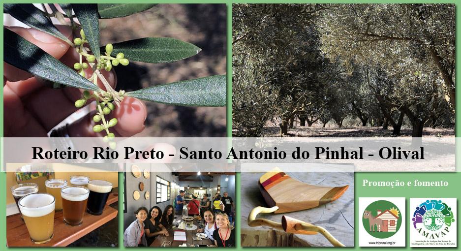 Roteiro Rio Preto Santo Antonio do Pinhal